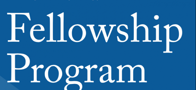 Interactive Mechanics Fellowship Program
