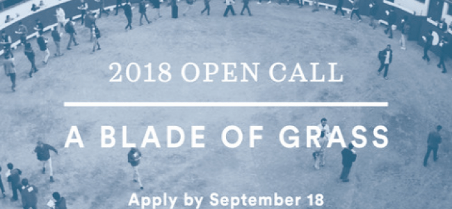 A Blade of Grass 2018 Fellowship for Socially Engaged Art