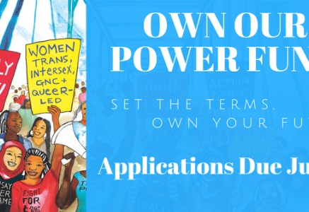 Third Wave Fund Accepts Applications for the Own Our Power Fund