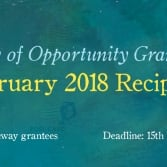 Announcing the February 2018 WOO Grantees